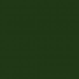 پوشرنگ روغني براق الكيدي کد 154
