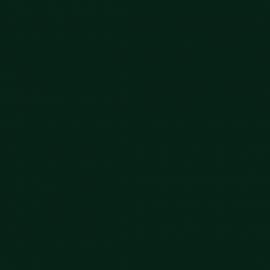 پوشرنگ روغني براق الكيدي کد 155
